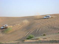 ccdd1151dab Desert safari.... A must do in Dubai! Long Haul