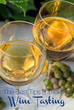 There are ways you can become a wine connoisseur, all you need is a pinky to raise and a few of the best wine tasting tips to get you through. via @AmyBarseghian