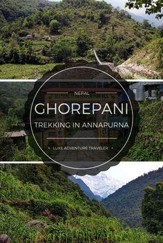 Ghorepani: A 4-Day T