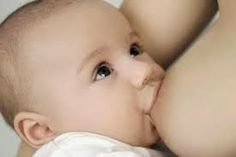 Looking for info on breastfeeding while pregnant? This article covers if breastfeeding is safe during pregnancy, eating well and other potential challenges. Stopping Breastfeeding, Breastfeeding Help, Breastfeeding Benefits, Dream Feed, Baby Due, Pregnant Mother, New Mums, Baby Health, Cute Faces