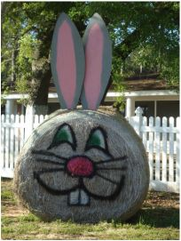 ...from hay 'in the field' to Easter bunny...