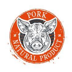 pig illustration: pig head on a white background. sketch. illustration