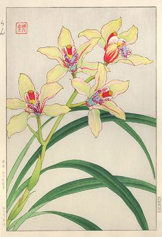 How To Select Little One Dresses Hanga Gallery . Torii Gallery: Orchids, Dendrobium By Kawarazaki Shodo Japanese Drawings, Japanese Prints, Botanical Drawings, Botanical Prints, Watercolor Print, Watercolor Flowers, Cherry Blossom Art, Japanese Flowers, Japanese Painting