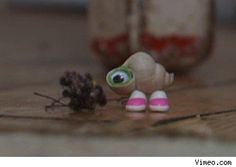 """Sometimes people say that my head is too big for my body, and then I say, ""Compared to what?!"" Marcel the Shell with shoes on <3"