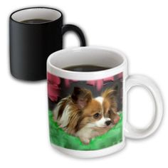 3dRose Papillon, Magic Transforming Mug, 11oz