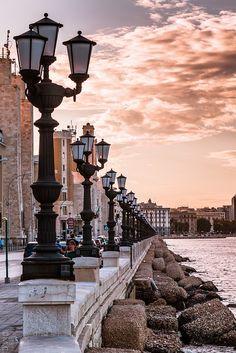 Bari, é a capital da província de Bari e da região da Apúlia (ou, em italiano, Puglia), sobre o Mar Adriático, na Itália . É o segundo mais importante centro econômico do sul do continente na Itália, após Nápoles, e é bem conhecida por seu porto e universidade, bem como a cidade de São Nicolau.