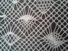 Arañas. Mooi voorbeeld van diverse spinnen