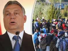 THE people of Hungary are expected to vote in record numbers in what has become an anti-immigration referendum aimed at Brussels bureaucrats forcing them to take in migrants under EU quota schemes.
