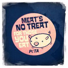 save a pig, go vegan