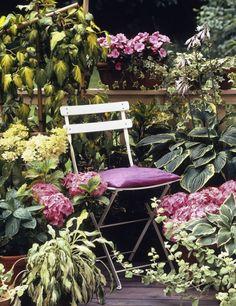 Grüne Harmonien für schattige Balkone. Wenn man Blumen, Stauden oder Gehölze in große Töpfe pflanzt, lässt sich der Sitzplatz immer neu gestalten.