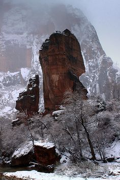 Zion National Park, Utah; photo by .Jason Branz