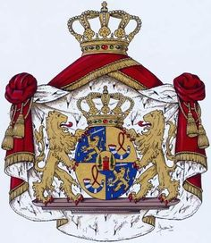 Bij koninklijk besluit van 25 januari 2002 is Máxima een wapen en een vlag toegekend