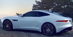 The new Jaguar F-Type Coupe is all the rage in the car world right now. Who can blame us. It is beautiful. Check out the commercial by hitting the image...
