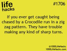 Hah! This life hack is a life saver! I shall never be hurt or eaten by a crocodile!