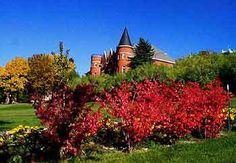 Washington State University, Pullman Washington