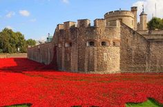 Tower of London Poppies - the red sea was made up of 888,246 hand-crafted ceramic poppies – each planted in memory of a soldier killed in WWI.