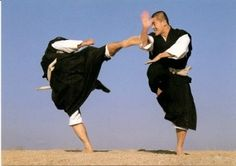 Shorinji Kempo Aikido, Martial Arts Weapons, Chinese Martial Arts, Warrior Spirit, Dynamic Poses, Kendo, Bruce Lee, Taekwondo, Tai Chi