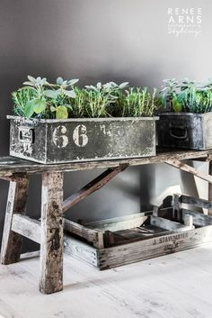 + #wooden_bench #herbs #plant_container