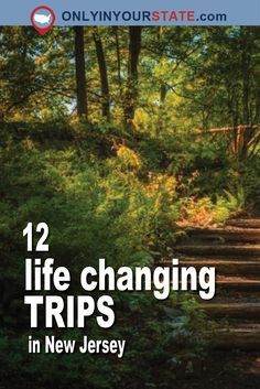 12 Incredible Trips In New Jersey That Will Change Your Life Day Trips In Nj, One Day Trip, Weekend Trips, New Jersey, Jersey Day, Jersey Girl, Solo Travel, Travel Usa, Usa Roadtrip