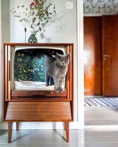 Turn a retro TV into a cute cat bed! Pet stuff doesn't have to be ugly. Such a. - Turn a retro TV into a cute cat bed! Pet stuff doesn't have to be ugly. Such a… Turn a retro TV into a cute cat bed! Pet stuff doesn't have to be ugly. Such a… Lit Chat Diy, Diy Cat Bed, Pet Beds Diy, Vintage Tv, Upcycled Vintage, Vintage Television, Cat Room, Cat Furniture, Office Furniture