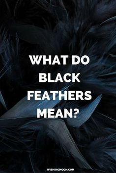 What Do Black Feathers Mean - Have you found a black feather? In this post we explain what it means when you find a feather in your home, garden, workplace, car or just on the ground in front of you Black Feather Meaning, Raven Feather, Meaning Of Feathers, Colorful Feathers, Black Feathers, Wishing Moon, Finding Feathers, Feather Symbolism, Witch Tattoo