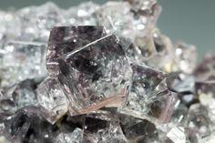 蛍石 Fluorite  /  イギリス Co. Durham, Weardale, Westgate, Heights Mine