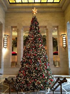 Christmas Tree at the Four Seasons Hotel, New York! New York Christmas, Merry Christmas To All, Christmas Store, Christmas Lights, Christmas Decorations, Christmas Trees, Holiday Decor, Irish Christmas, Christmas Offers