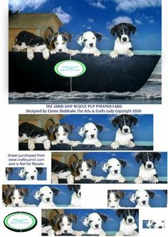 THE GOOD SHIP RESCUE PUP PUPPY DOG PYRAMID CARD on Craftsuprint - Add To Basket!