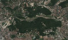 A Floresta-parque de Košutnjak é uma das mais populares áreas de recreação de Belgrado, capital da Sérvia, com mais de 3 Km2. Seu nome vem dos cervos que viviam na região do parque antes da Primeira Guerra Mundial. A densa floresta era uma reserva de caça da família real até 1903, quando foi então aberta para o público.