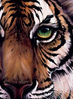 women tiger face acrylic painting - Google Search