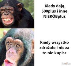 Memy i śmieszne obrazki z głownej - strona 46129 - KWEJK.pl
