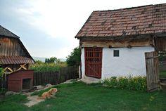 the barn & the yard