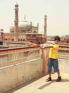 Rooftop Cricket in Delhi