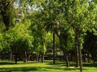 Parques y Jardines en Barcelona | Actividades para niños