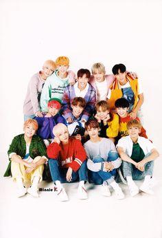 seventeen bebeses♥