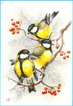 "Photo from album ""Lars Carlsson"" on Yandex. Bird Illustration, Christmas Illustration, Watercolor Bird, Watercolor Paintings, Image Deco, Decoupage, Christmas Bird, Bird Drawings, Vintage Birds"