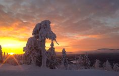 Taivas tulessa! Sky is on fire in Levi Lapland Finland