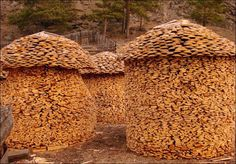 Fun making woodpiles, many photos