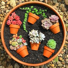 55 creative DIY succulents ideas for you Page 44 of 55 Succulents plants DIY potted plants succulents idea. The post 55 creative DIY succulents ideas for you Page 44 of 55 appeared first on Garden Diy. Succulent Gardening, Succulent Terrarium, Garden Plants, Container Gardening, House Plants, Potted Plants, Terrariums, Succulent Cuttings, Succulent Ideas