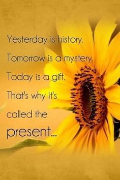 Yesterday is history, tomorrow is a mystery, today is a gift. That's why we call it the present