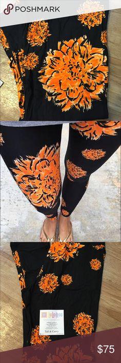 LuLaRoe Leggings TC Unicorn LuLaRoe Leggings TC Tall and Curvy Black with Orange Flowers HTF Unicorn RARE TC LuLaRoe Pants Leggings
