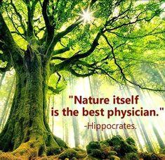 Nature Itself is the best physician ~ Hippocrates ~~❤~~ WILD WOMAN SISTERHOOD™