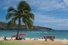 Hanauma Bay Nature Preserve in Honolulu, Oahu, Hawaii   Hawaiian Beach Rentals
