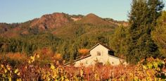Kaz Winery, Sonoma County
