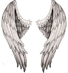 Angelic wings sketch -research study for my project Art Drawings Sketches, Tattoo Sketches, Tattoo Drawings, Kunst Tattoos, Body Art Tattoos, Wing Tattoos, Sleeve Tattoos, Alas Tattoo, Angel Wings Drawing