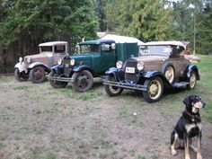 Some of our old stuff - the one on the left has sold since this picture, the one in the middle is a dually and my husband's baby, the one on the right is a 1930 Roadster restored by my husband's grandfather in the 60s.  Token Henry the Hound appearance.