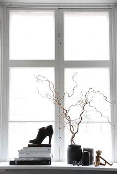 window + branches + shoe + books