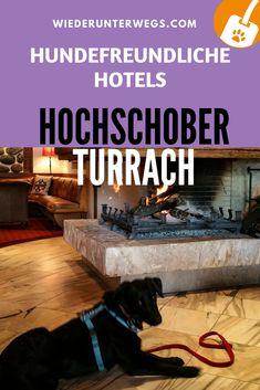 Im traumhaften Hotel Hochschober auf der Turracher Höhe: Urlaub mit Hund - Hunde sind gerne gesehene Gäste. Labrador, Dogs, Travel, Animals, Hotels, Europe, Holiday Beach, Dog Food, Pooch Workout