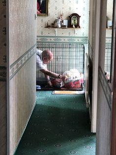 My Grandad taking care of his cat with a broken leg. http://ift.tt/2p8TMQL