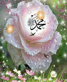Beautiful Wallpaper For Phone, Beautiful Flowers Wallpapers, Beautiful Gif, Islam Muslim, Allah Islam, Islam Quran, Allah Wallpaper, Islamic Wallpaper, Allah Calligraphy